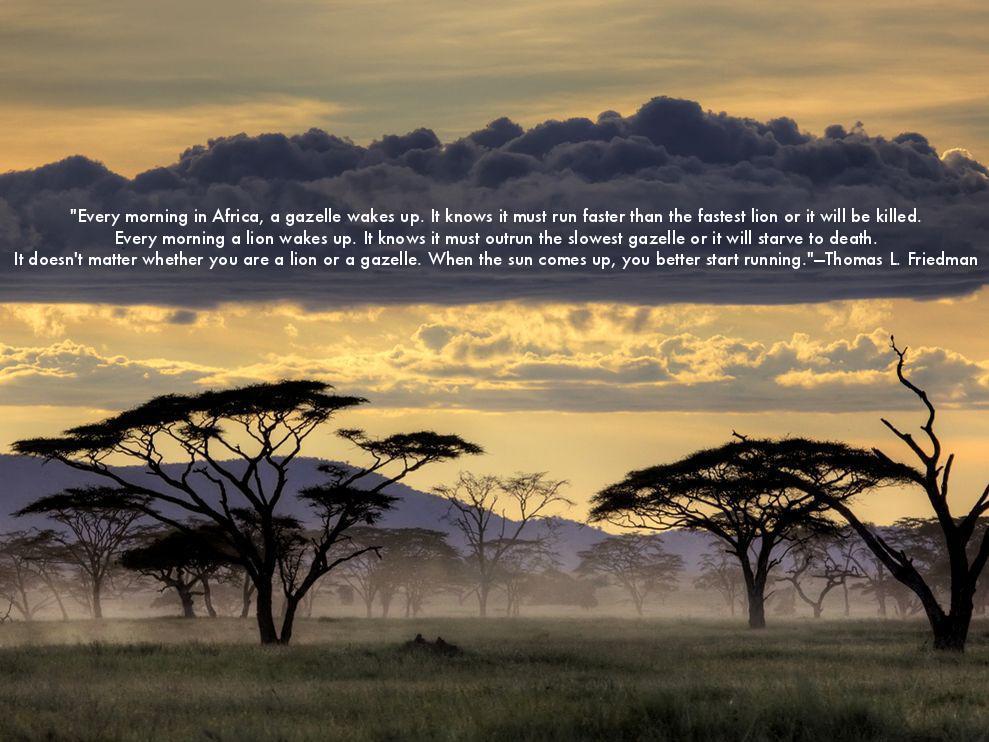 Africa quote #7