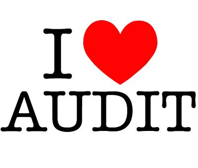 famous quotes about audit   quotationof com