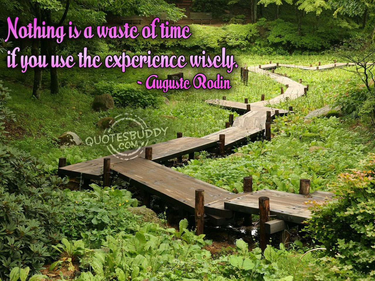 Experience quote #4