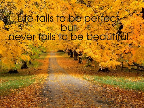 Fall quote #8