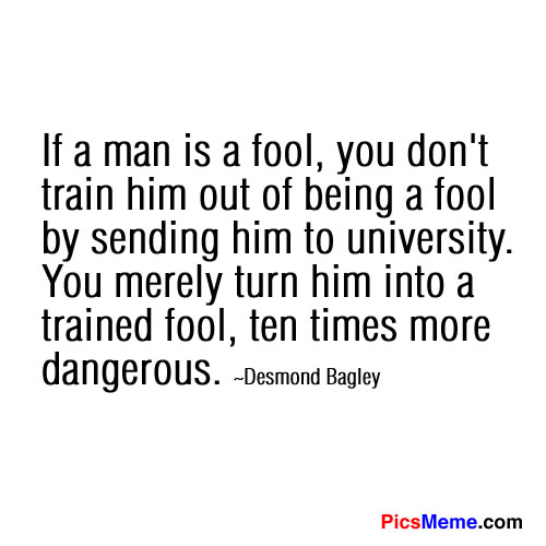 Fool quote #1