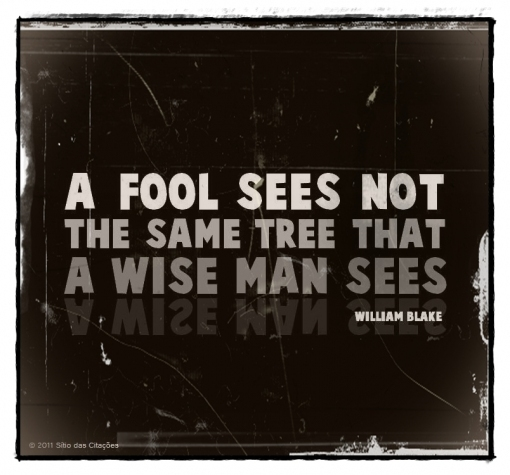 Fool quote #7