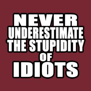 Idiot quote #2