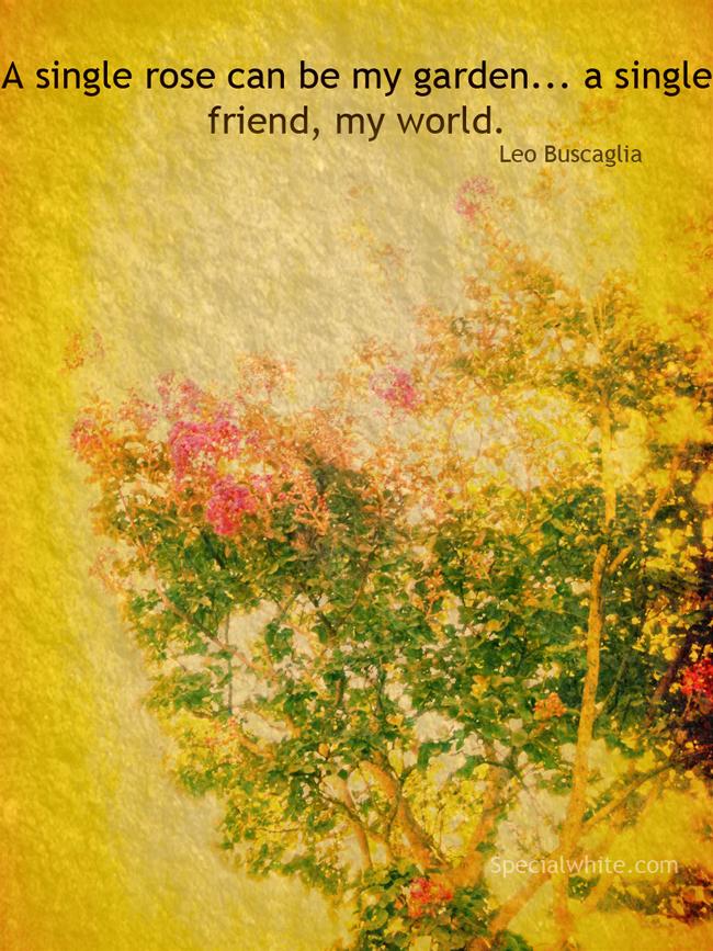 Leo Buscaglia's quote #3