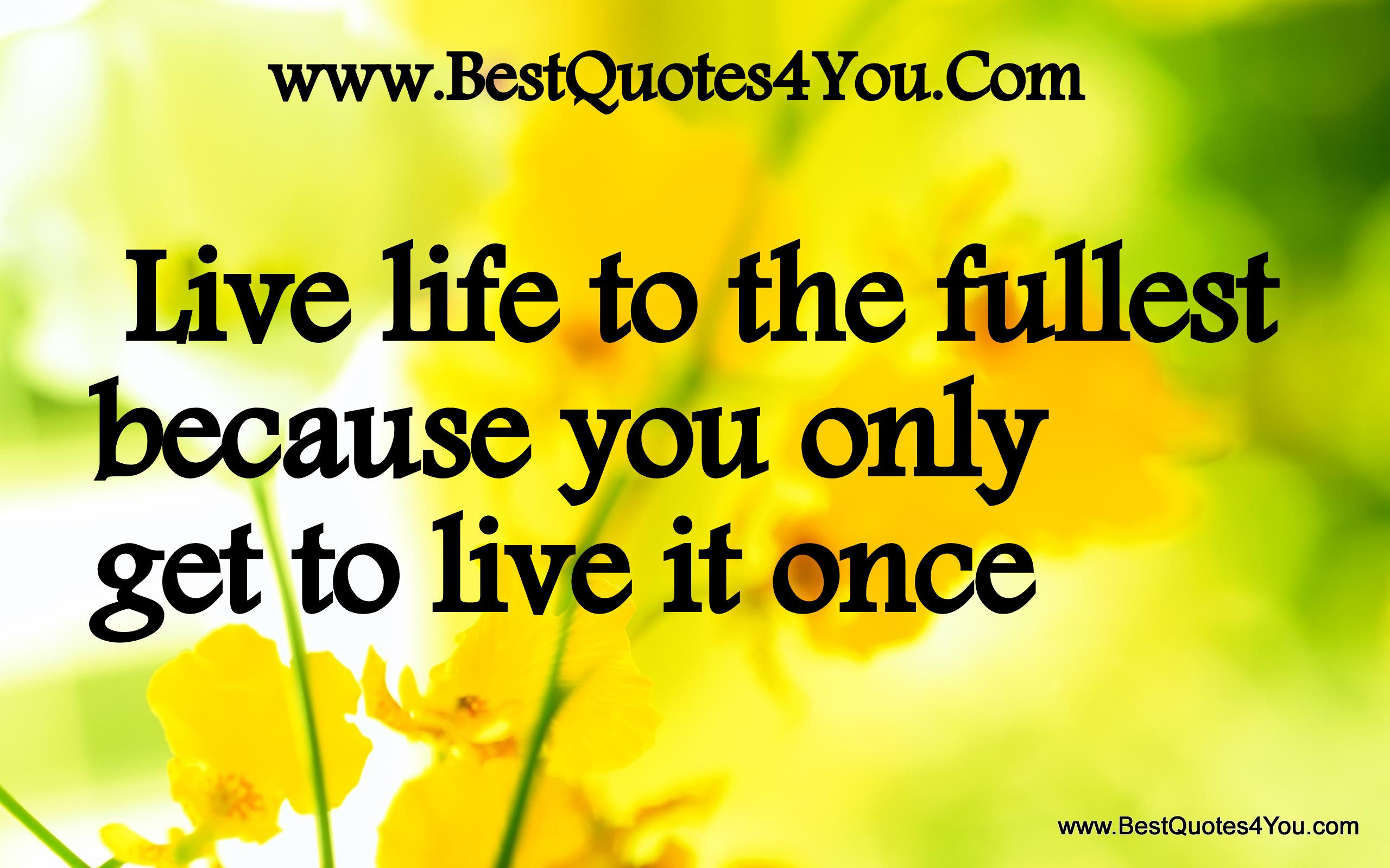 famous quotes about 39 live life to the fullest