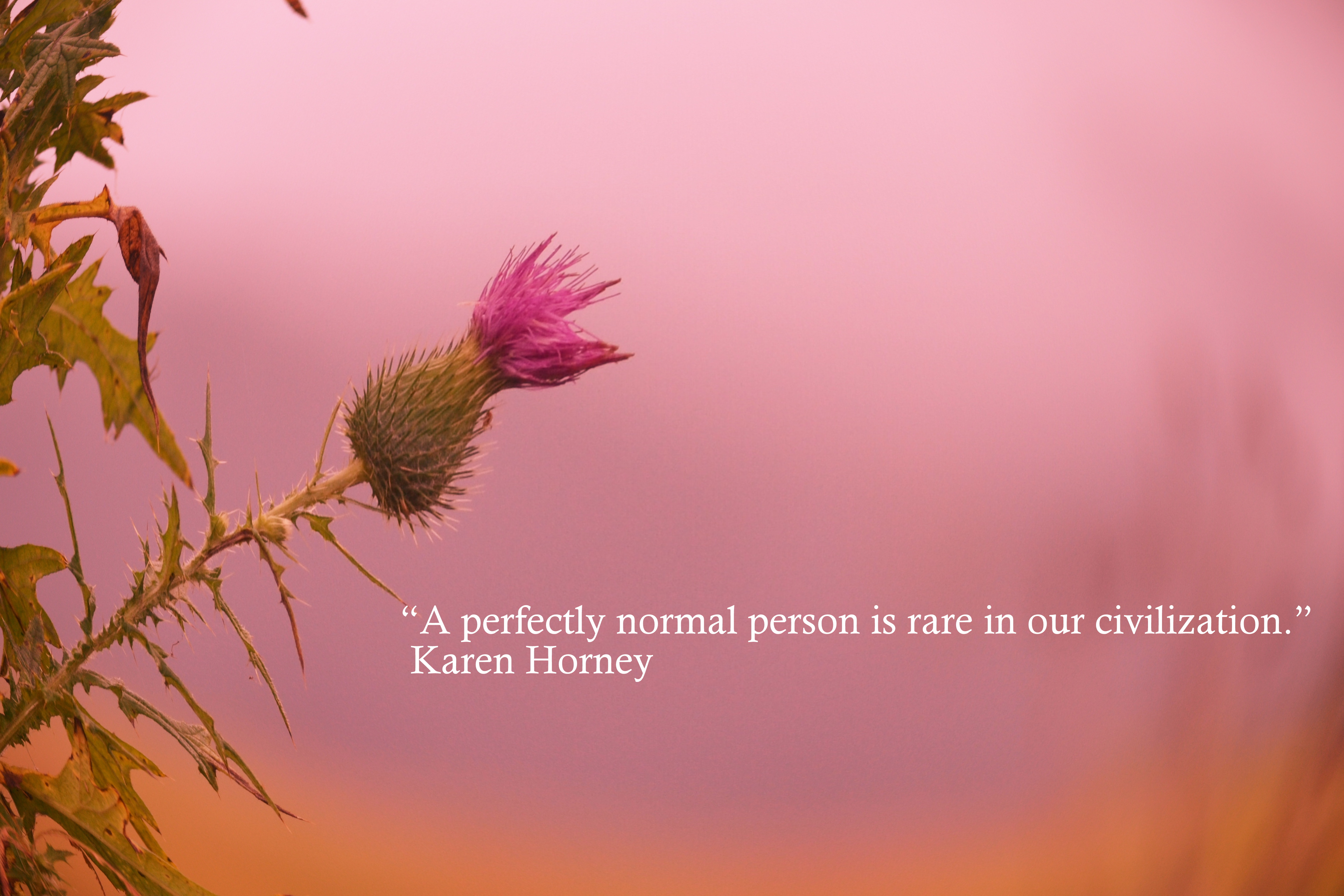 Normal quote #8