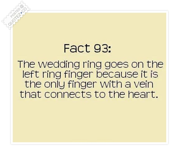 Famous Quotes About 'Ring'