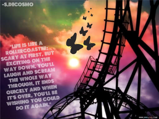 Famous Quotes About 'Roller Coaster Ride'