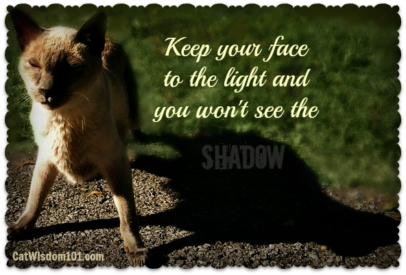Shadow quote #2