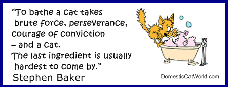 Stephen Baker's quote #1