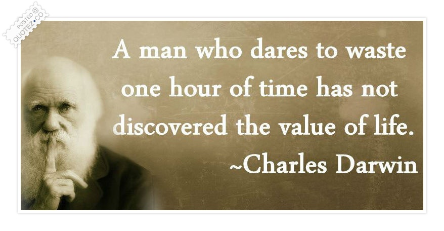 Famous Quotes About Value Of Life Quotationof Com