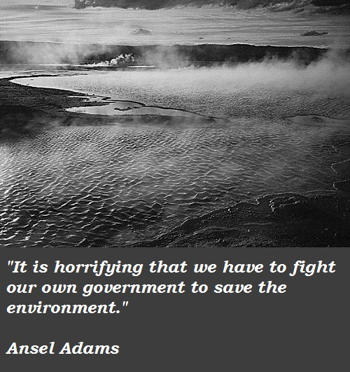 Ansel Adams's quote #8
