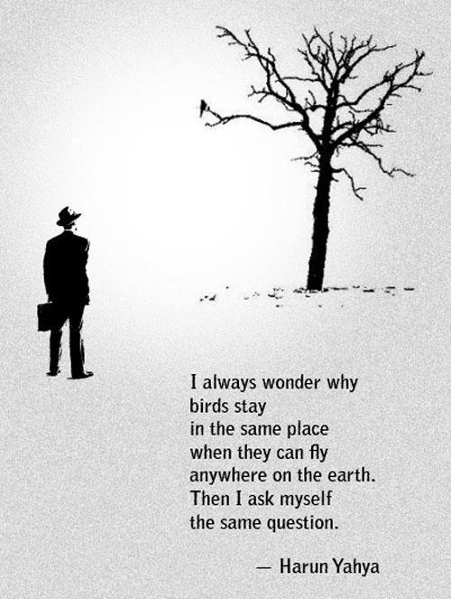 Deep quote #2