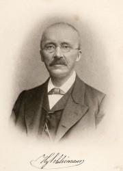 Heinrich Schliemann's quote