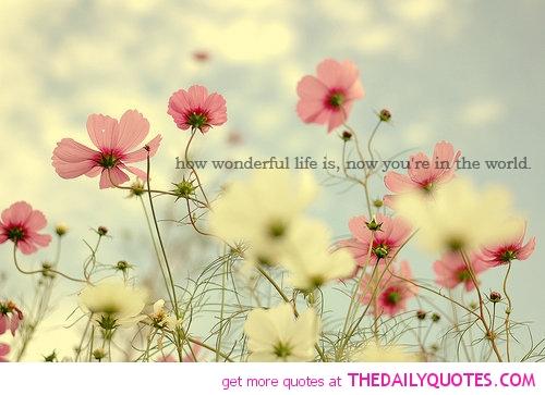 Life quote #5
