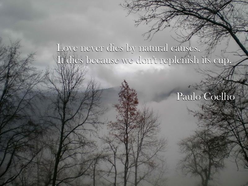 Paulo Coelho's quote #4